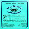 Carter 'Ernie Ball' C6 10 String Nickel 'Smart String Set'